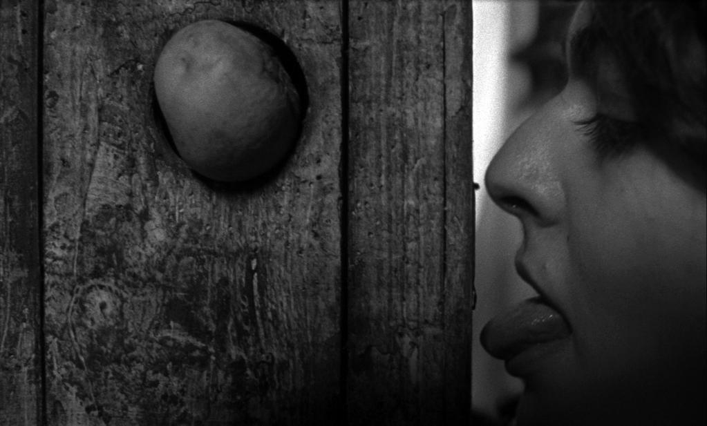 Vila do Conde International Short Film Festival - 2011
