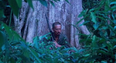 10 000 Nights in the Jungle - © bathysphere