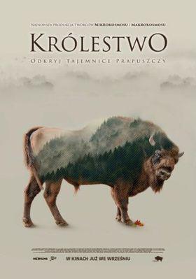 Les Saisons - Poster - Poland