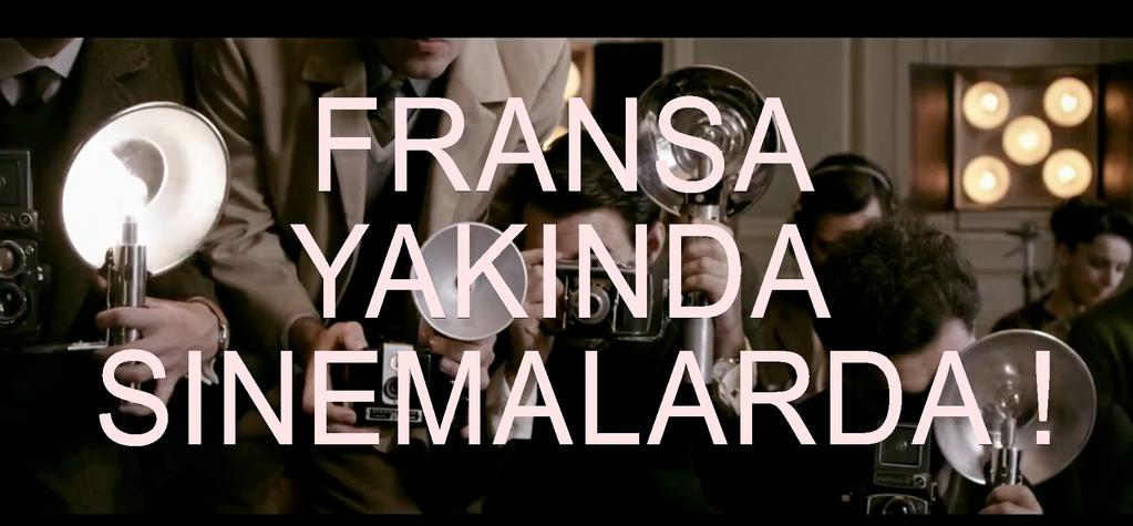 French films and the Turkish theatrical market in 2013