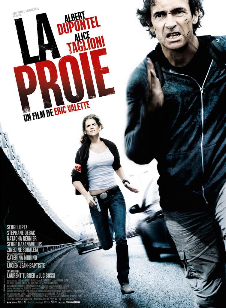 Globo Filmes - Poster - France