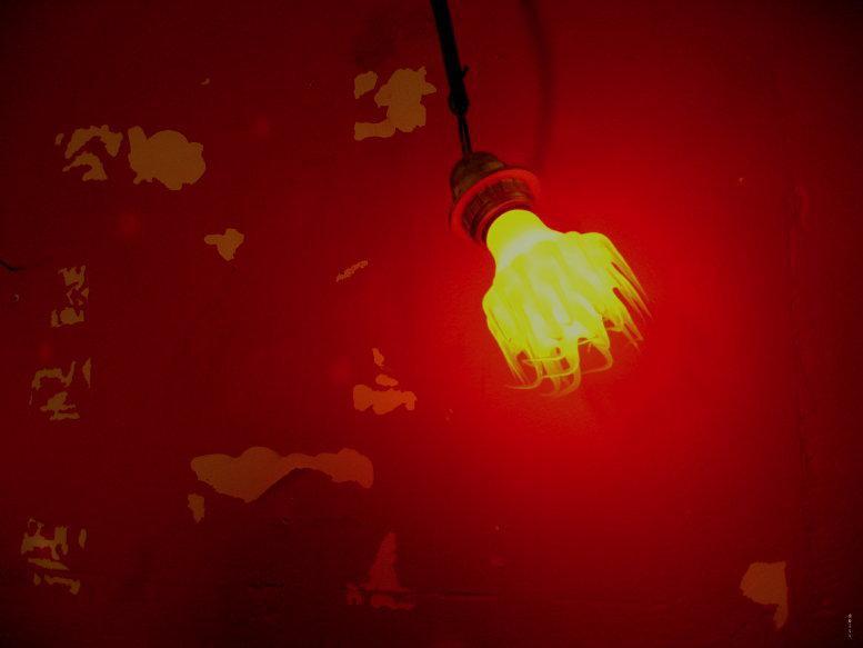 クレルモンフェラン-国際短編映画祭 - 2007