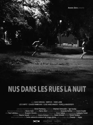 Nus dans les rues la nuit