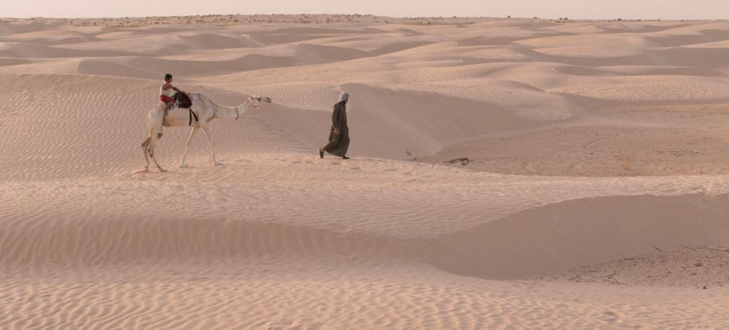 L'Enfant chameau