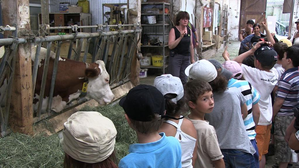 Regards sur nos assiettes