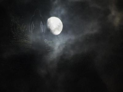 Rien ne s'oppose à la nuit