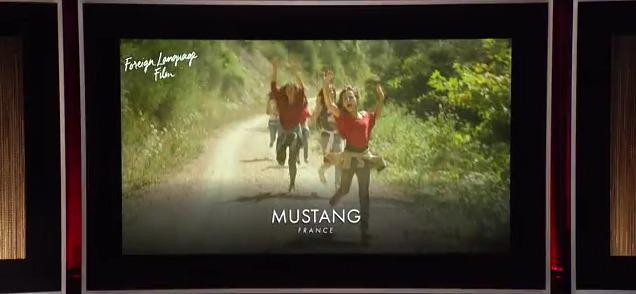 ¡ Mustang representará a Francia en los Oscar 2016 !