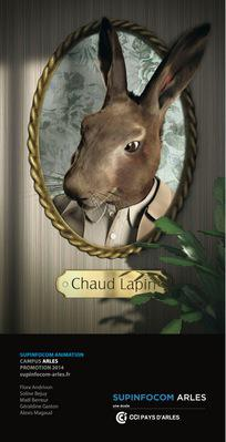 Chaud Lapin