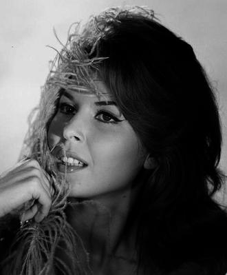 Dominique Boschero - © Sam Levin