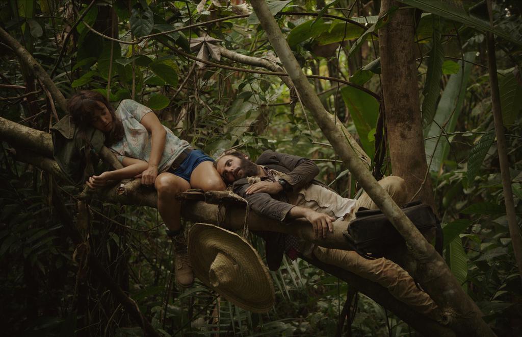 La Ley de la jungla