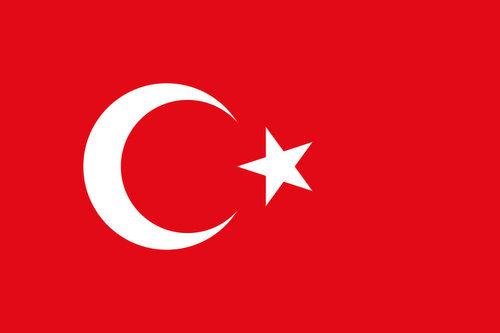 Market Report: Turkey 2000