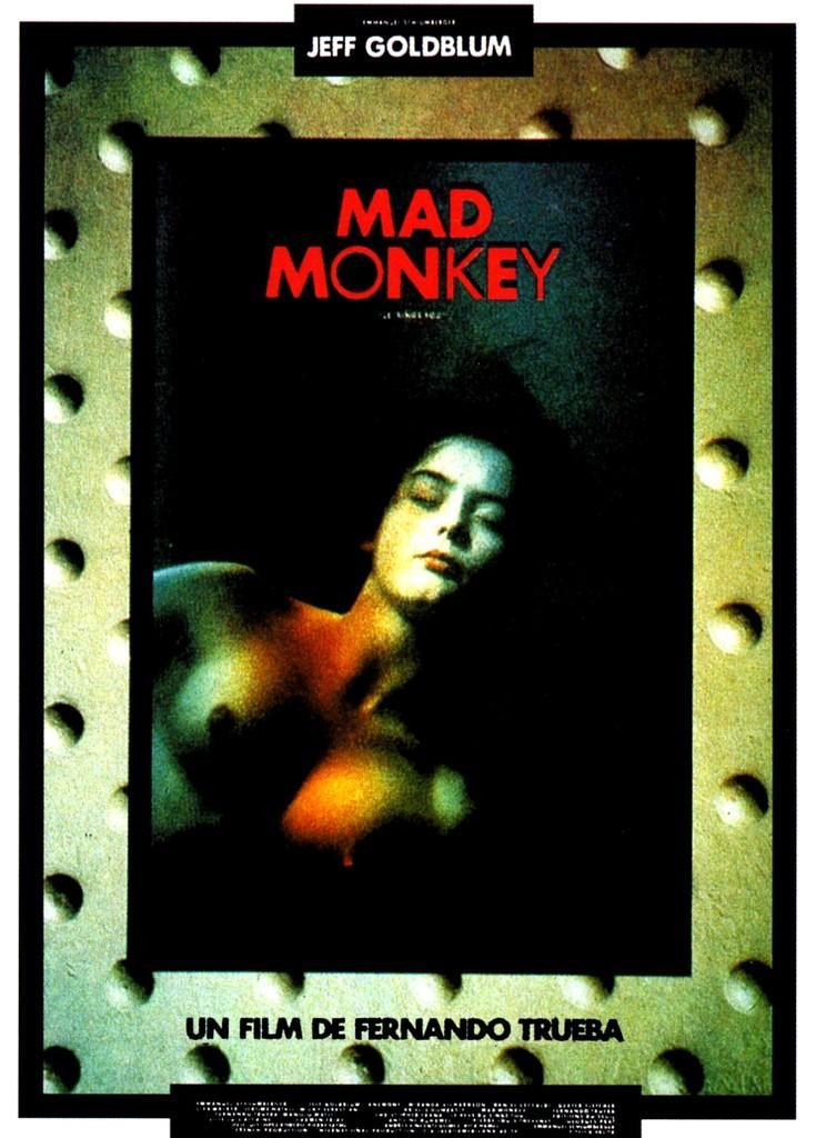 Mad Monkey (Le Rêve du singe fou)