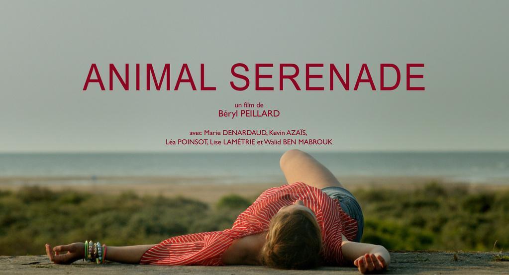 Animal Serenade