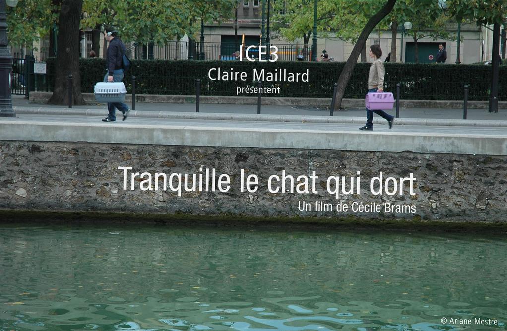 Cécile Brams