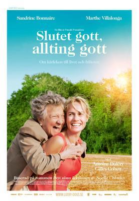 La Dernière Leçon - Poster - Sweden