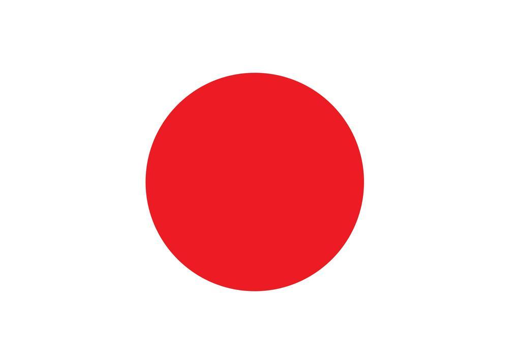 Balance de Japón 2010
