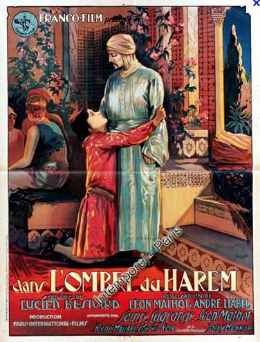 Dans l'ombre du harem