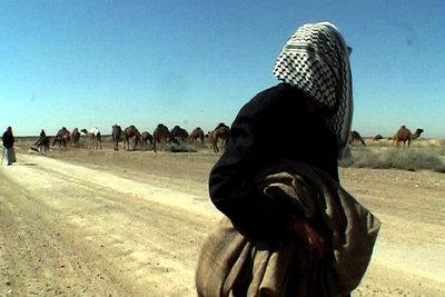 Irak, le chant des absents / 仮題:イラク、不在者の歌