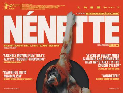 Nénette - Affiche UK