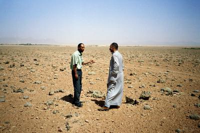 Pépinière du désert