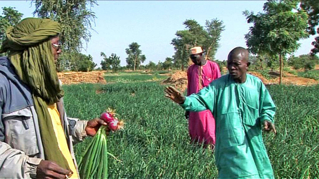 Abdoulaye Adamou Mato