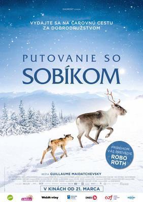 Aïlo : Une odyssée en Laponie - Poster - Czech Republic