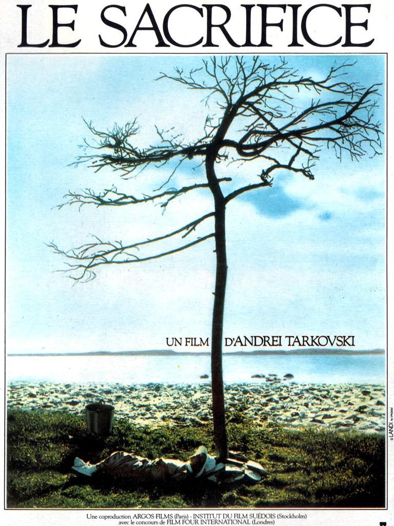 Festival Internacional de Cine de Cannes - 1986