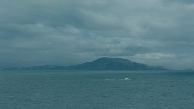 Podesta Island