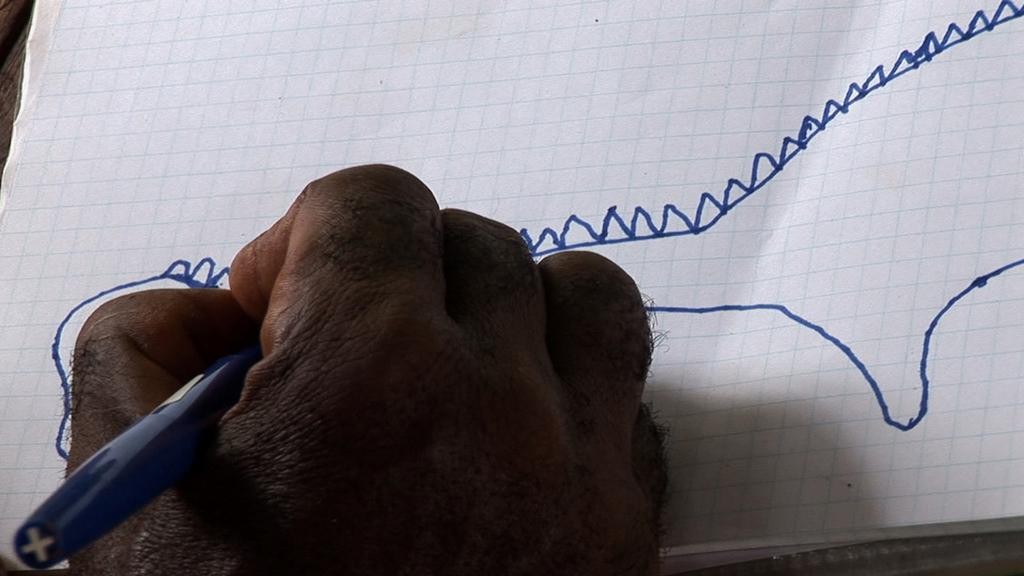 The Mokele-Mbembe Hypothesis de Marie Voignier (2011) - UniFrance