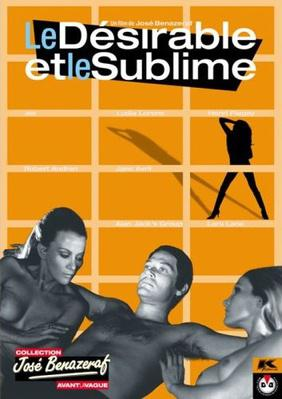 Le Désirable et le sublime - Jaquette DVD France