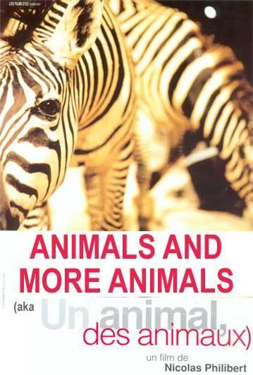 動物、動物たち