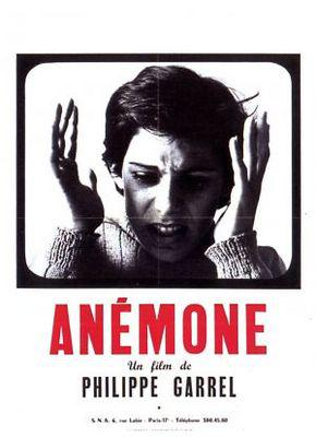 Anémone - Poster France