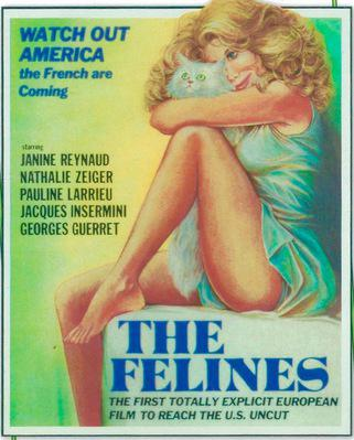 The Felines - Jaquette DVD Etats-Unis