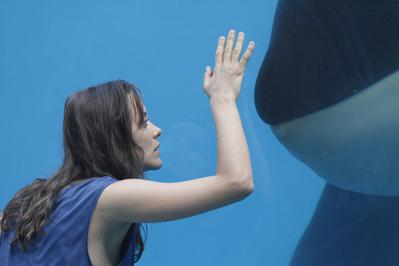 Rust & Bone - © Roger Arpajou Why Not Productions