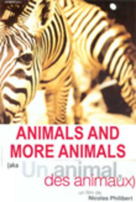 Animals and More Animals