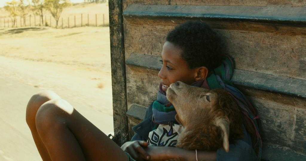 Wolela Assefa