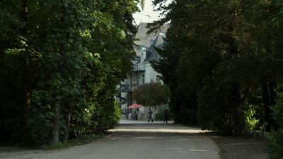 Le Sous-Bois des insensés - © Esperanza Films
