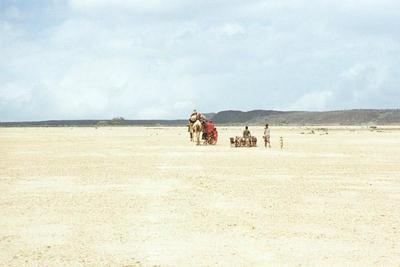 Si le vent soulève les sables