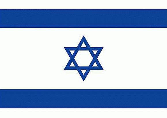 Balance de Israel - 2002