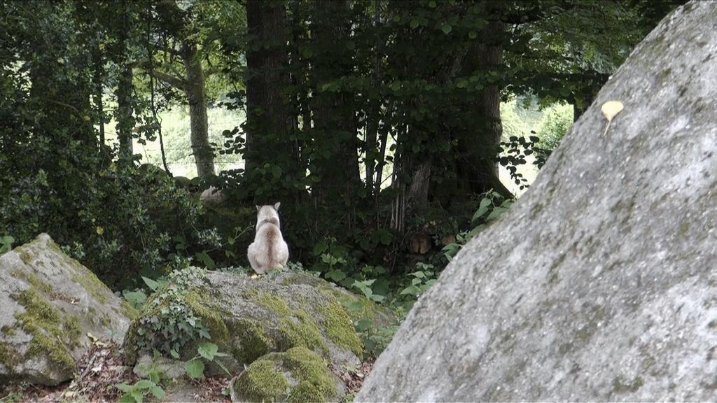 Nine d'Urso - © Alain Cavalier