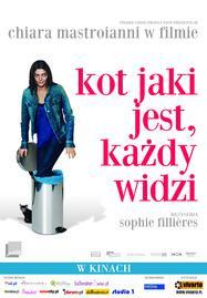 Un chat un chat - Poster Pologne