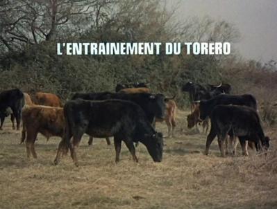 L'Entraînement de Teruel (L'entraînement du toréro)