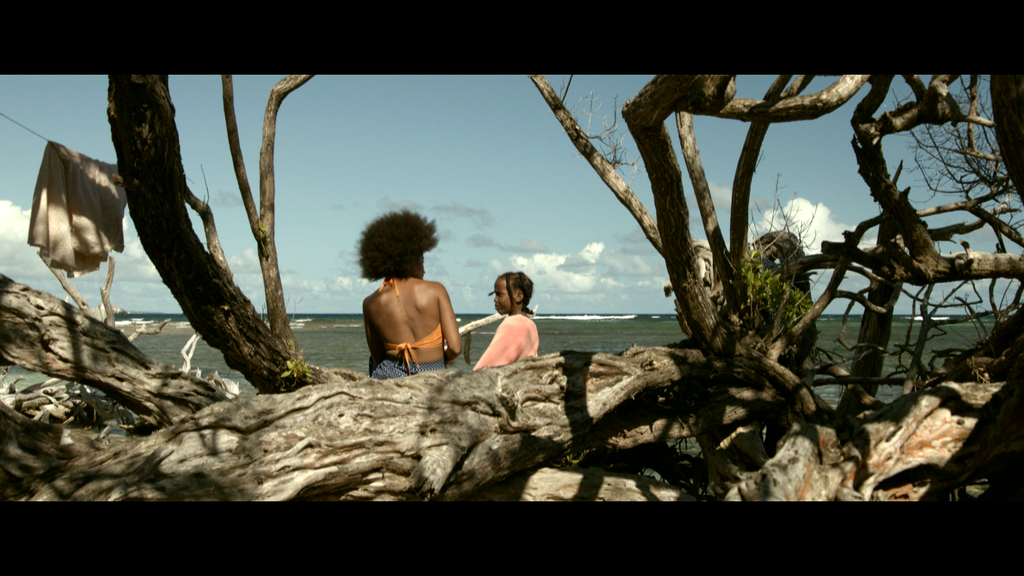 International Festival of Francophone Film in Acadie (FICFA) - 2014