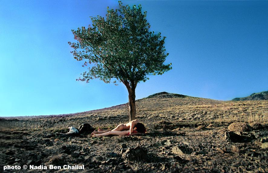 Festival international du film de Gand - 2004