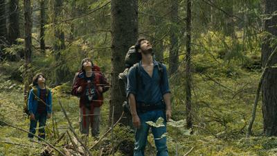 森の奥深くで