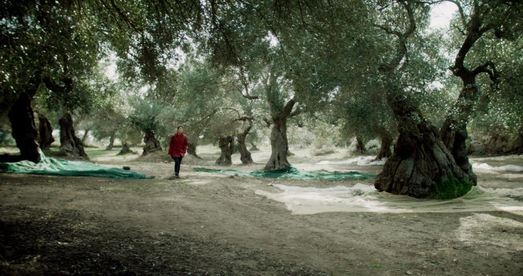 Milena Magnani - © JBA Production