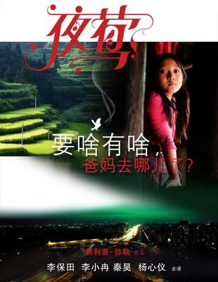 Le Promeneur d'oiseau - poster - Chine 3
