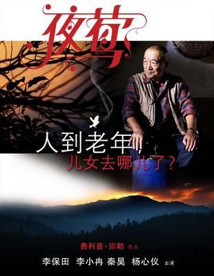 Le Promeneur d'oiseau - poster - Chine 4