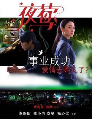Le Promeneur d'oiseau - poster - Chine 5