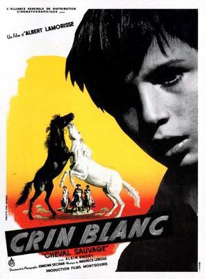 Crin blanc le cheval sauvage